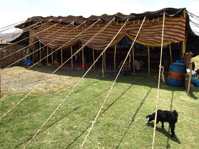 ギャッベを作る遊牧民のテント